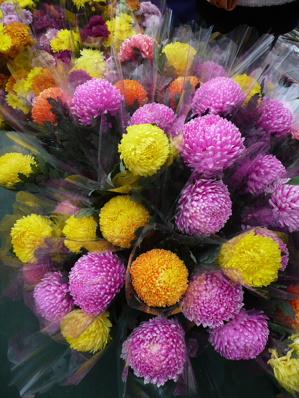 Webs of significance an obligatory chinese new year blog post flowers for sale at the chinese new year flower market in victoria park izmirmasajfo