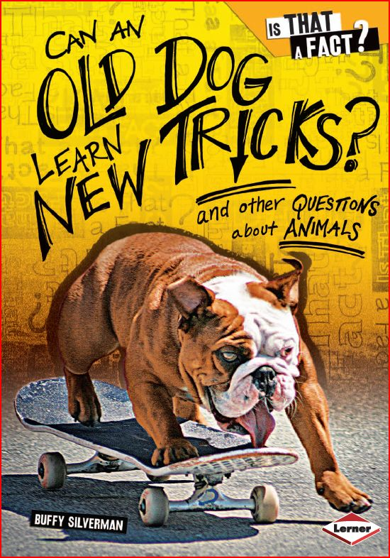 Lets read and learn can an old dog learn new tricks ebook publisher lerner lang eng type pdf 44 pages size 12 mb fandeluxe Epub