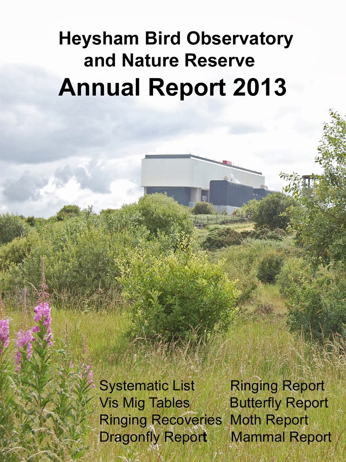 2013 Heysham Obs report available now