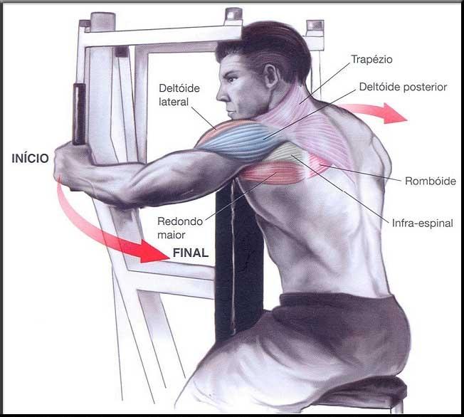 Amado Exercícios Para ombros – Crucifixo invertido no Aparelho - Dicas  FD67