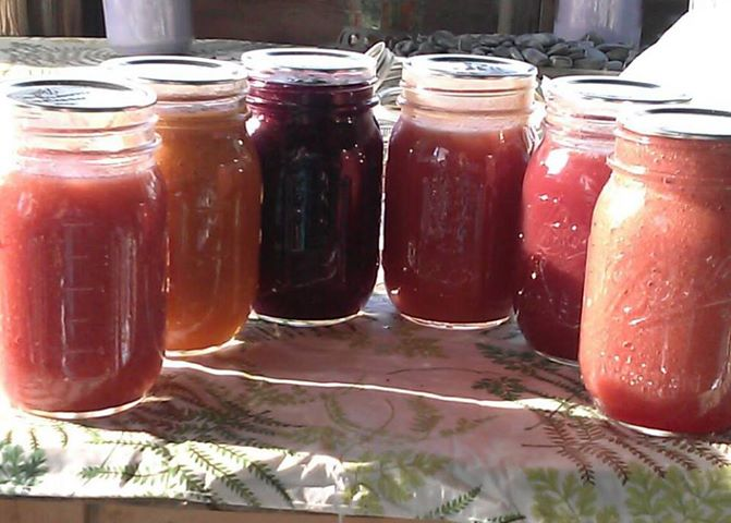 the plum applesauce spicy plum apple sauce plum applesauce 1 easy plum ...