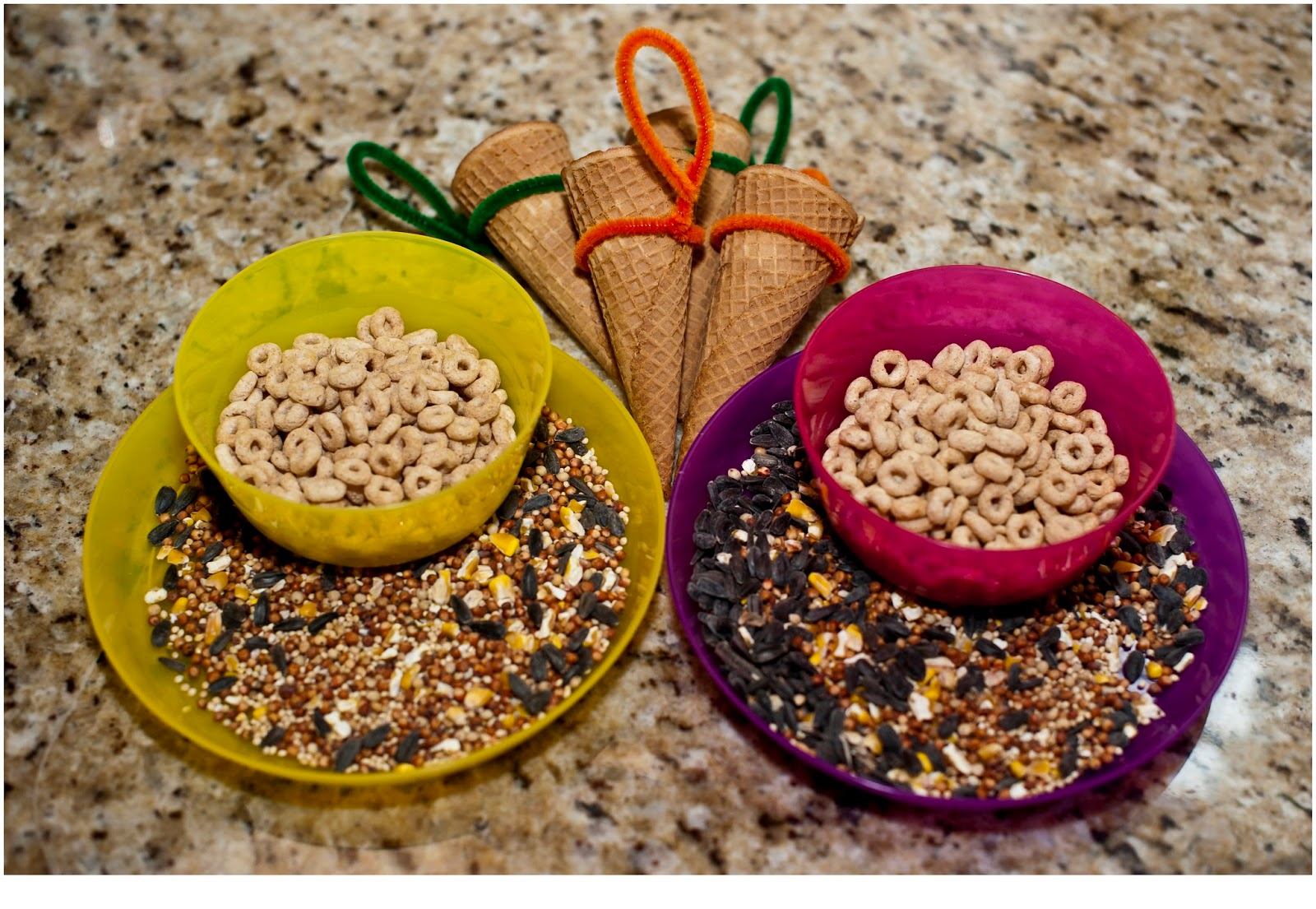 Think Outside the Toy Box Summer Series: Waffle Cone Bird Feeder
