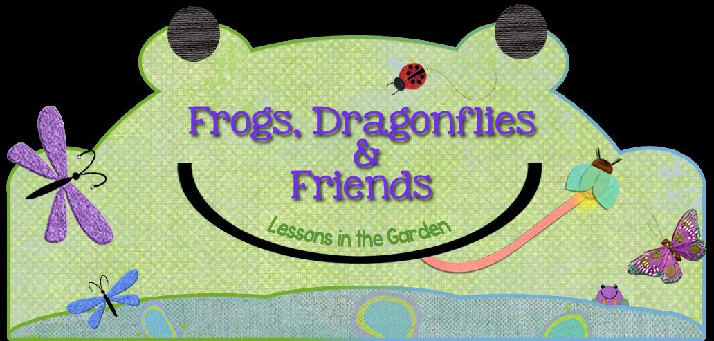 FrogsDragonfliesandFriends