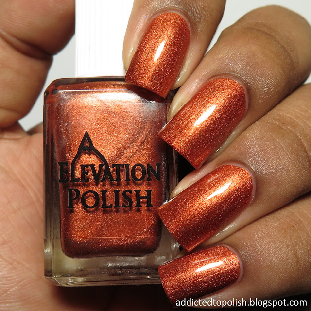 elevation polish the latin of 4 languages marco polo
