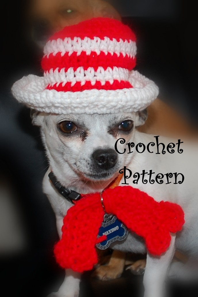 Posh Pooch Designs Dog Clothes: Cat.... UM.... Dog in The ...