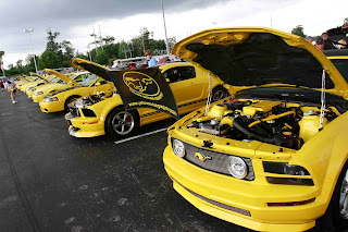 Th Annual Yellow Mustang Show In Pigeon Forge Tennessee - Gatlinburg car show