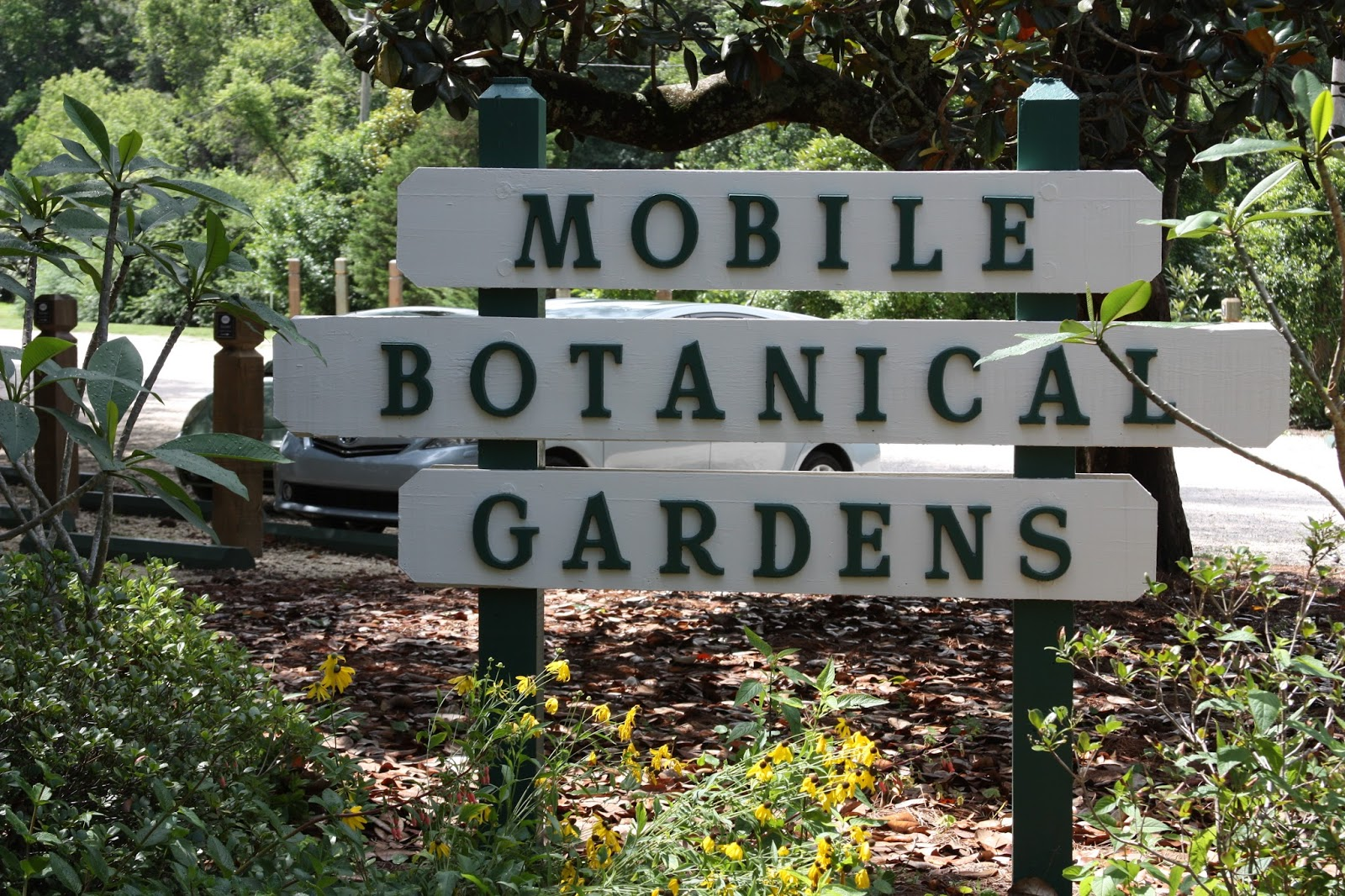 Mobile Botanical Gardens  Mobile ALAll the Dirt on Gardening  Mobile Botanical Gardens  Mobile AL. Mobile Alabama Botanical Gardens. Home Design Ideas