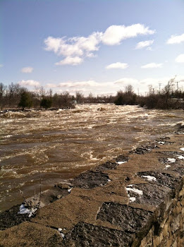 Black River Rages Through City
