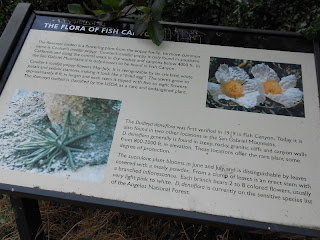 Fish Canyon Interpretive Sign