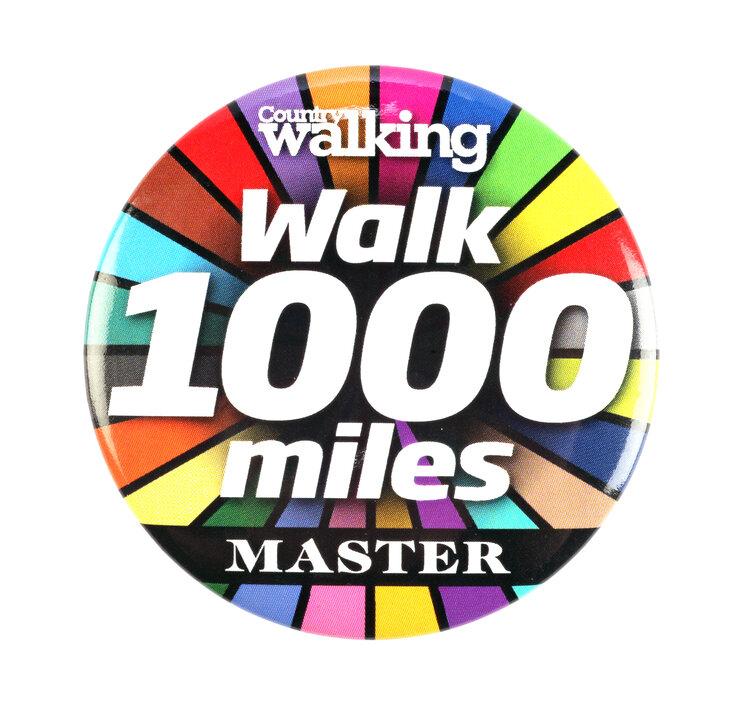 #walk1000miles 2021