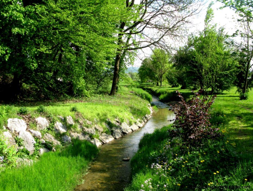 Creek HD 6858885