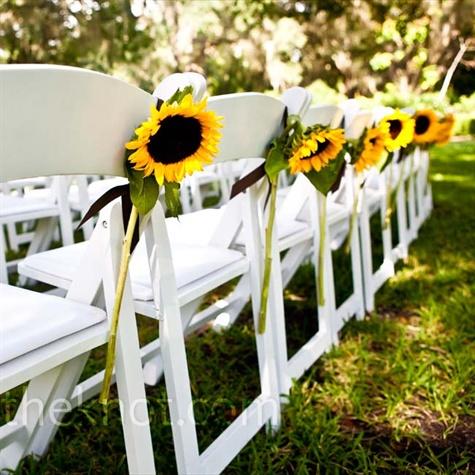 Casamento com Caf?: Decora??o com Girassol