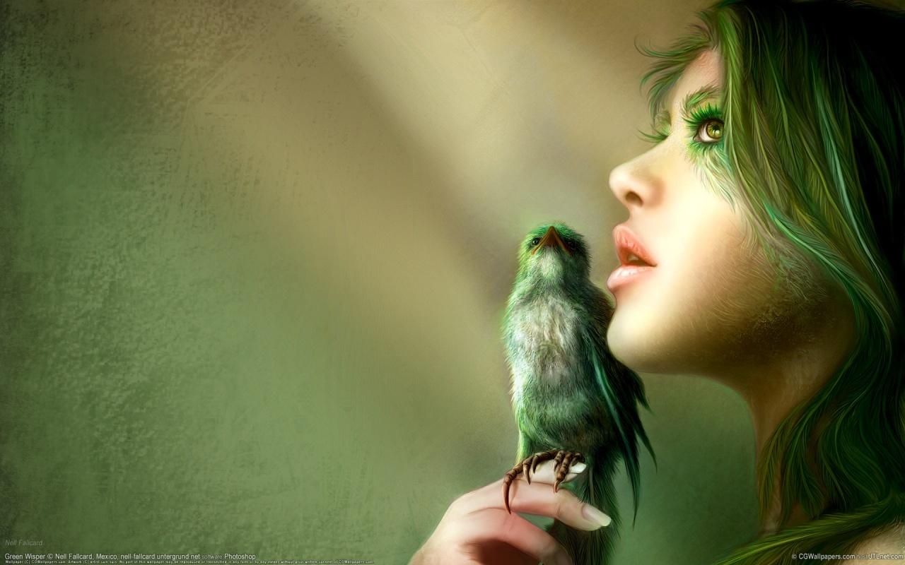 http://3.bp.blogspot.com/-O3Ycos1_89s/TZ641s1QXMI/AAAAAAAAAI8/SUo-Sxi0-Sk/s1600/1.jpg