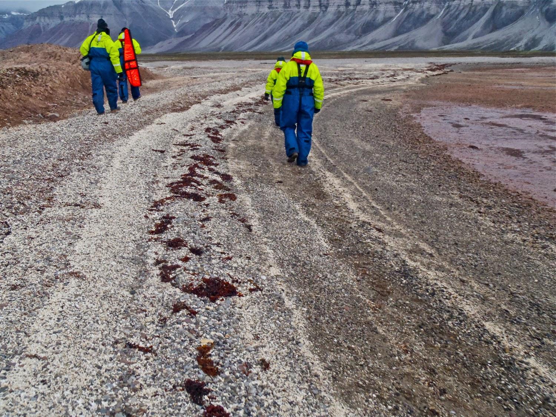 Coralholmen, islas Svalbard