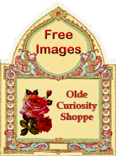 Olde Curiosity Shoppe