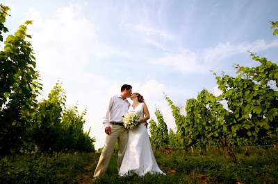 Sprucewood Shores Estate winery - wedding photo in the grape vines - Cara Mia Events 2008 wedding
