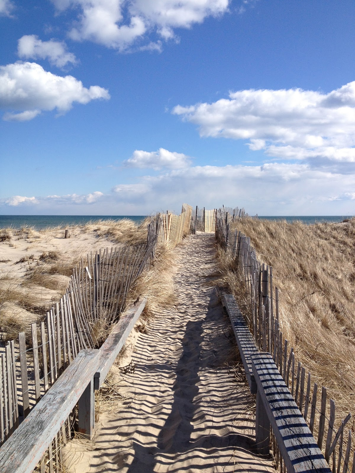 Painting the hamptons flying point and jane freilicher for The hamptom