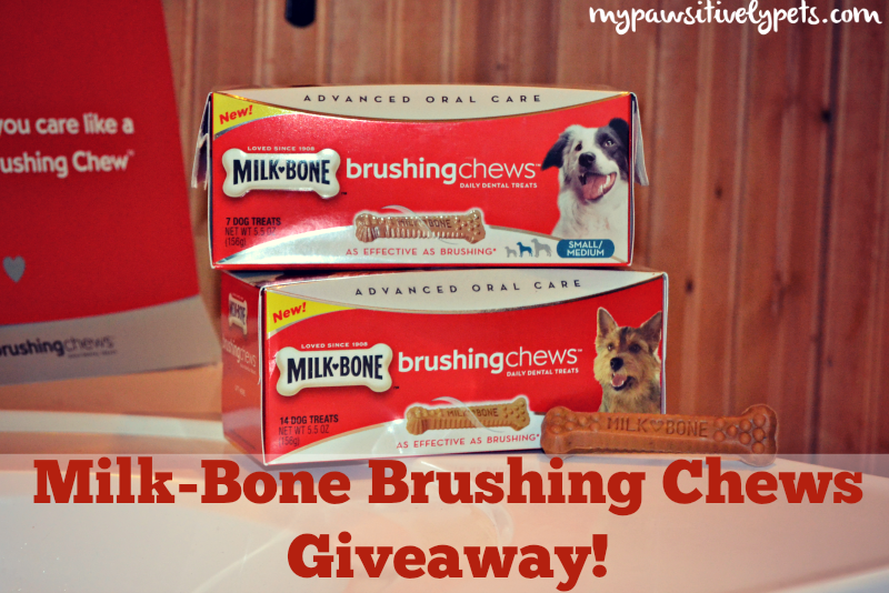 #MilkBone Brushing Chews Giveaway