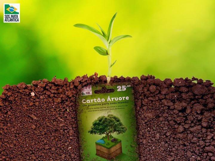 Plante uma árvore