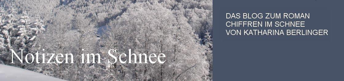 Notizen im Schnee
