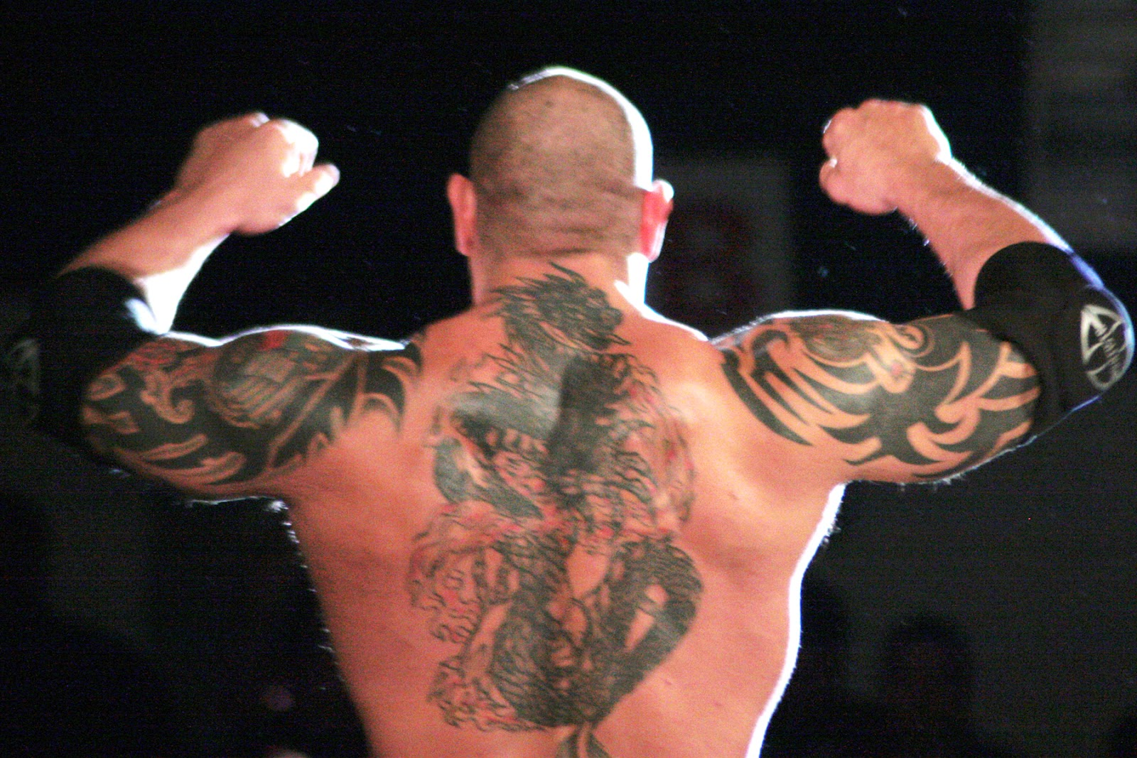 wwe batista hd wallpapers april 2013