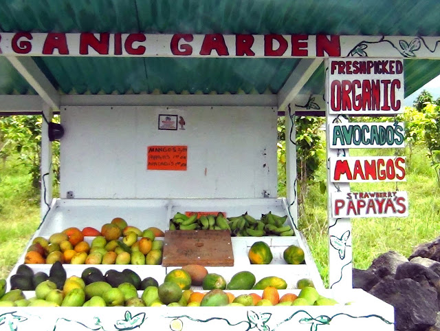 Organic produce stand in Captain Cook, Hawaii (c) Engela & Bill Edwards