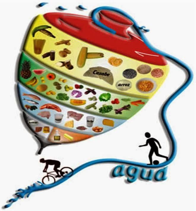 Periódico La Edad: Alimentación en el adulto mayor