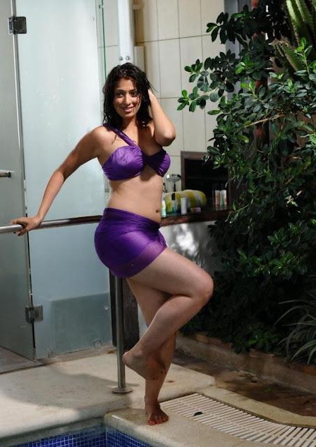 Lakshmi Rai Hot Photos in Adhinayakudu
