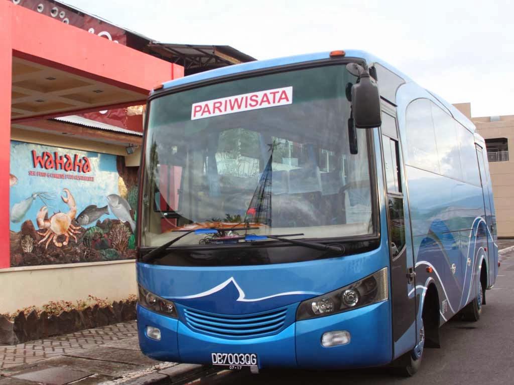 Bus Pariwisata 29 seat