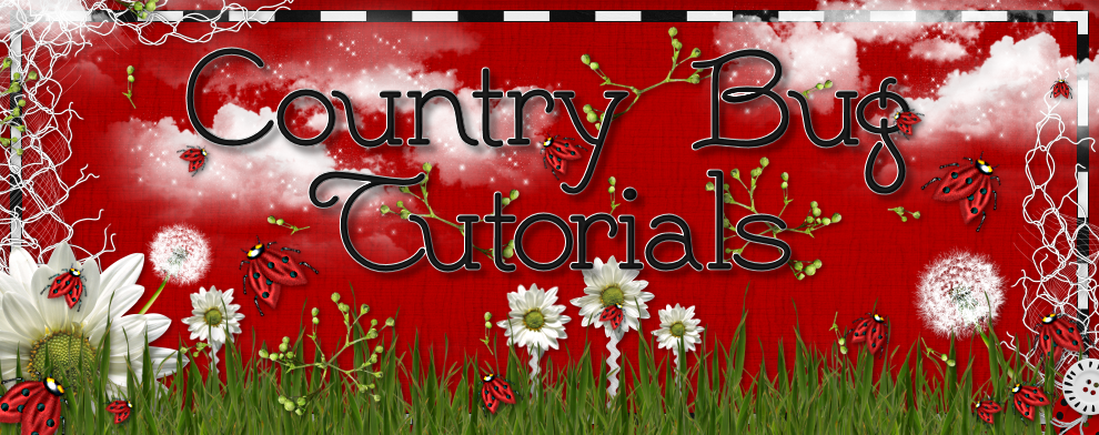 Country Bug Tutorials