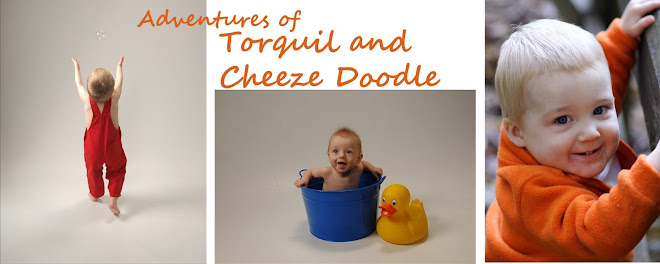 Adventures of Torquil and CheezeDoodle