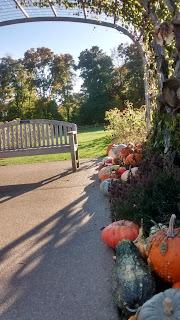 Penn State Arboretum pumpkins