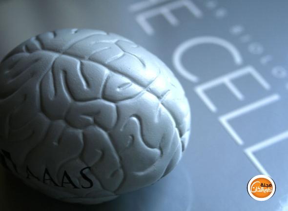 تمارين للدماغ لتحسين التركيز والذاكرة Improve-Memory-Brain-Training-4