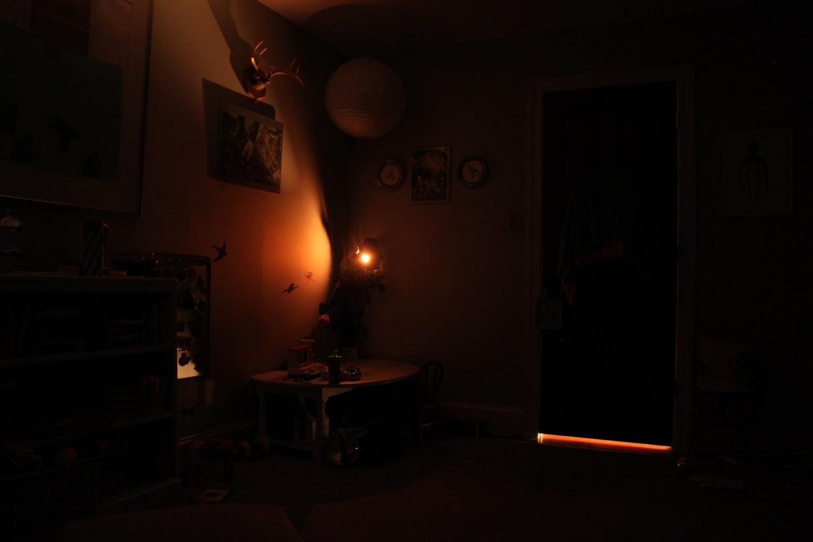 Tiptoethrough Diy Bird House Night Light