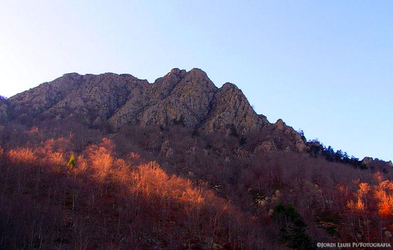 Paisatge i natura les agudes mass s del montseny for Les piscines del montseny