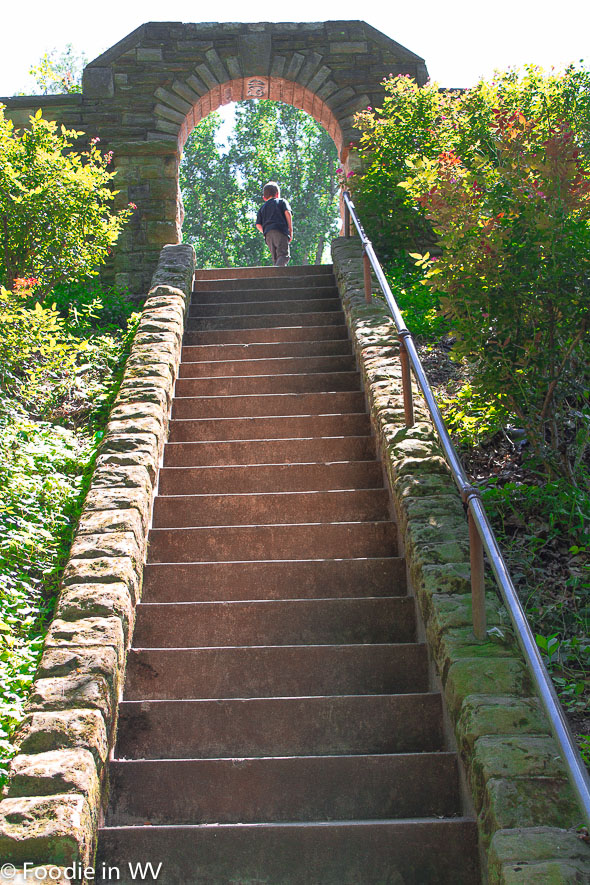 Steps Up To Ritter Park Rose Garden Huntington, WV