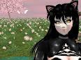 Historia 1: Inuyasha...Una nueva etapa comienza
