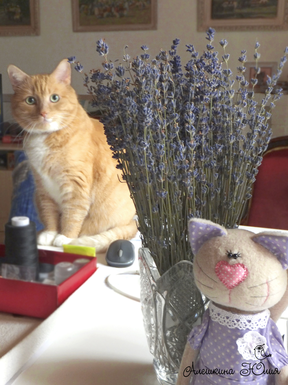 рыжий кот и лаванда