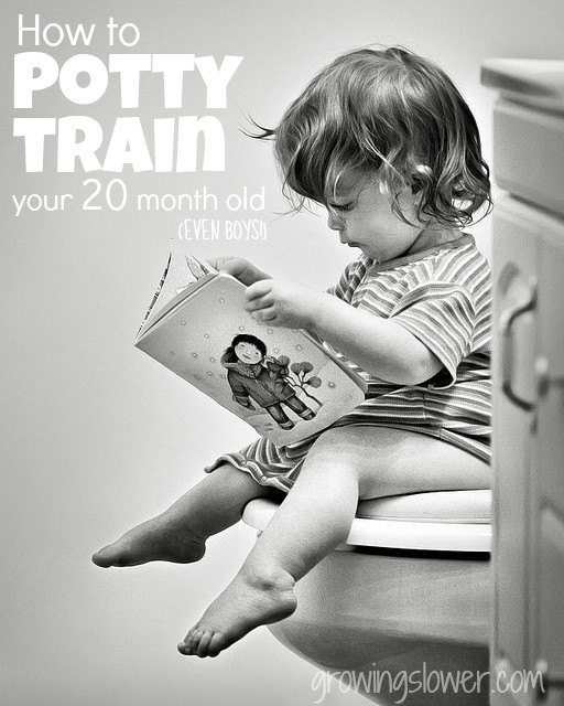 How to Potty Train Your 20 Month Old (Even boys!)