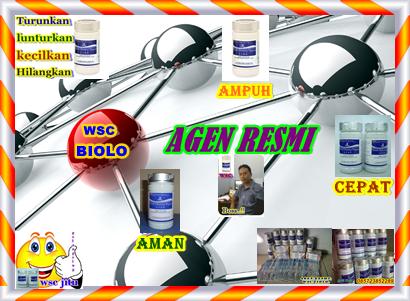 alamat website pelangsing wsc ampuh