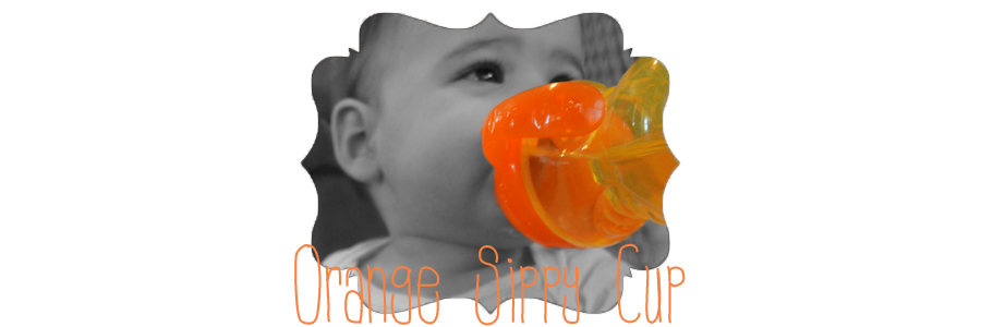 Orange Sippy Cup
