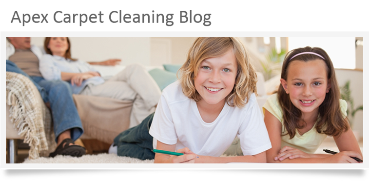 Apex Carpet Cleaning Blog