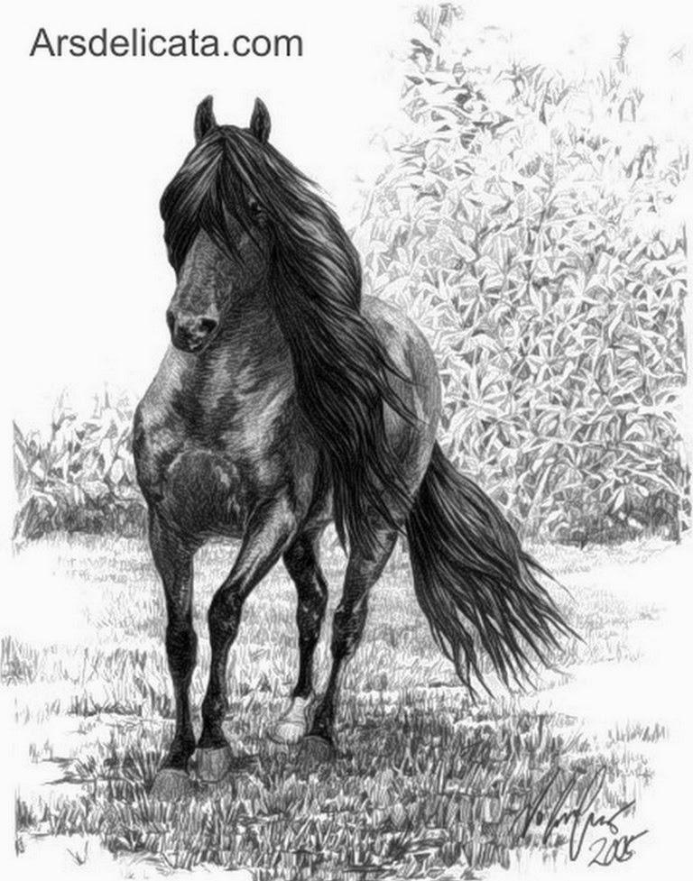 caballos-a-lapiz
