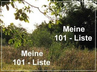 Meine 101 - Liste
