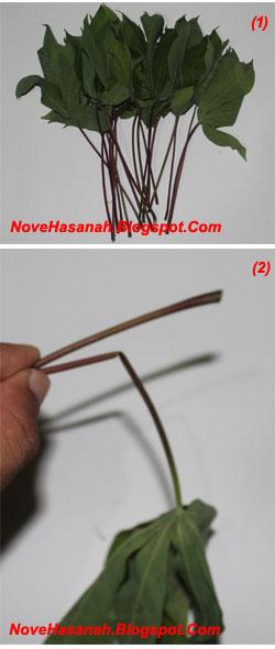 langkah-langkah cara membuat mainan tradisional anak berupa wayang dari daun singkong 2
