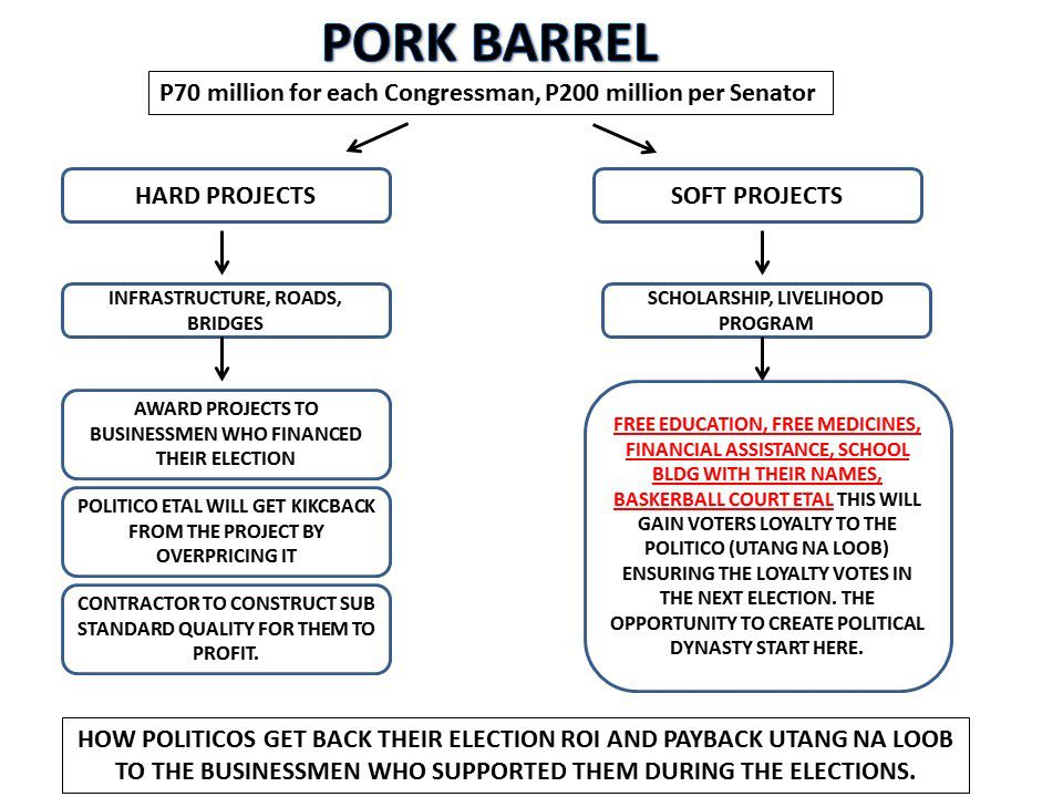 effect of pork barrel in education Pork-barrel versus irrelevance effects in portuguese public spending which limit or offset the pork-barrel effect even if the recipient economics of education.