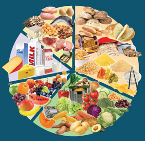 australian guide to healthy eating 2013 pdf