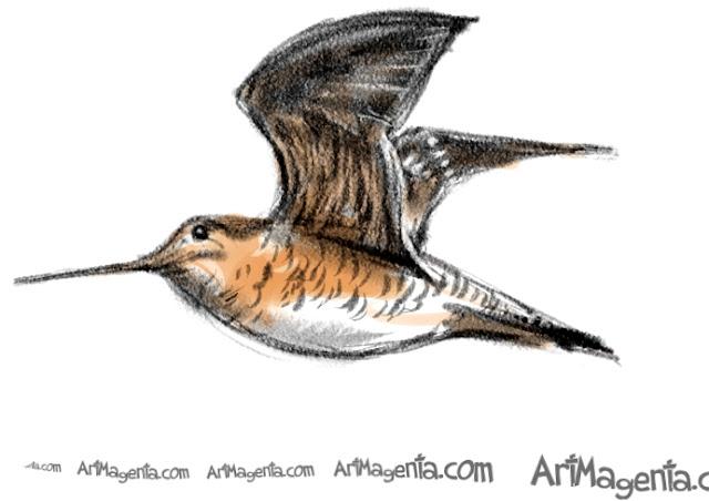 En fågelmålning av en dubbelbeckasin från Artmagentas svenska galleri om fåglar