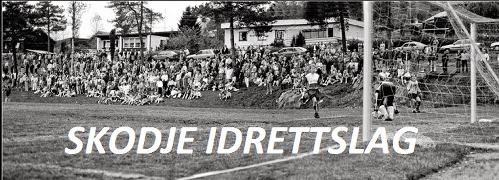 SKODJE IDRETTSLAG   -   SENIORLAGET 2014