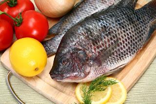 manger des poissons